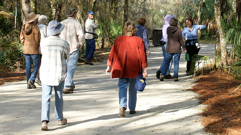 Nature Walk at Lettuce Lake Park