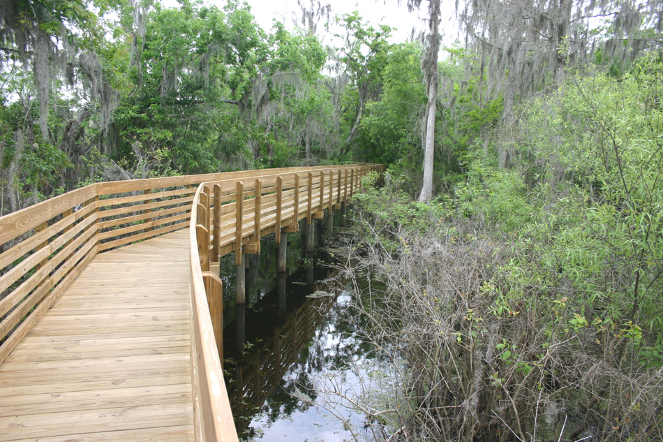 Lettuce Lake Park Boardwalk