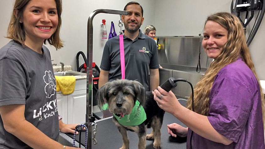 Mariel and Gerardo Diaz, left, with groomer Britany Robinson and Loki the Yorkshire terrier at the Diazes' new shop.