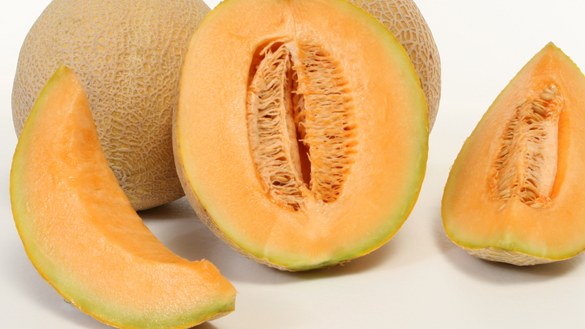 Cantaloupe In Spanish – Most researchers believe that it originates either from persia.