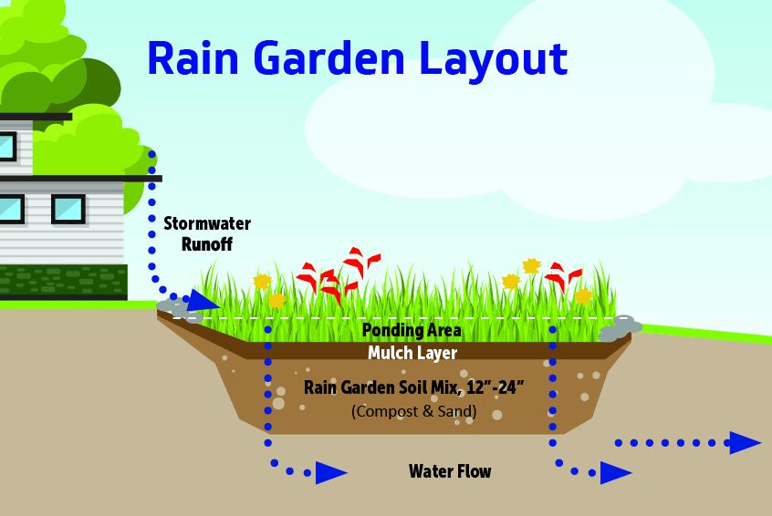 how to build a rain garden 10 steps