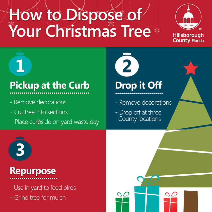 Disposing Of Christmas Trees: How To Dispose Of Your Christmas Tree