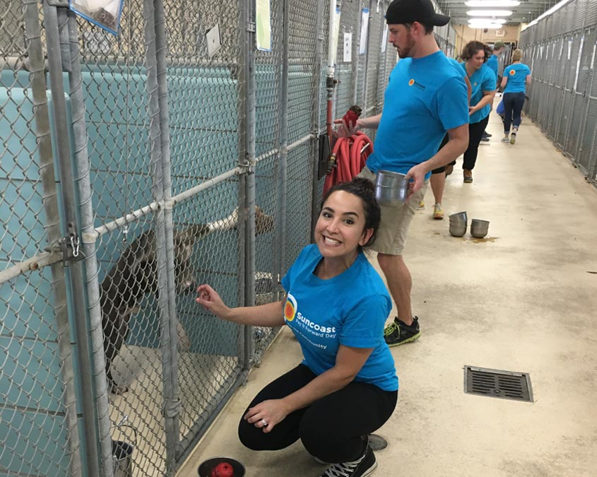 volunteer with Pet Resources